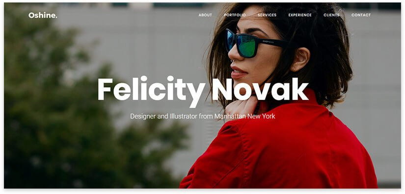 WordPress Freelancer Portfolio