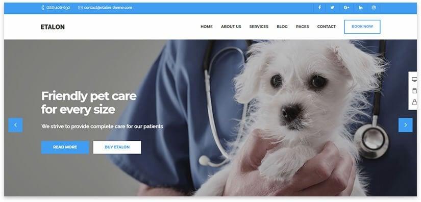 veterinary hospital wordpress