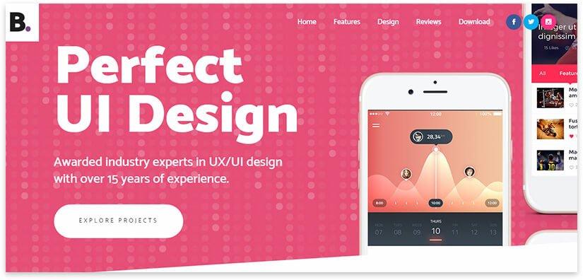 design application