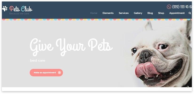 Шаблон для ветеринарной тематики