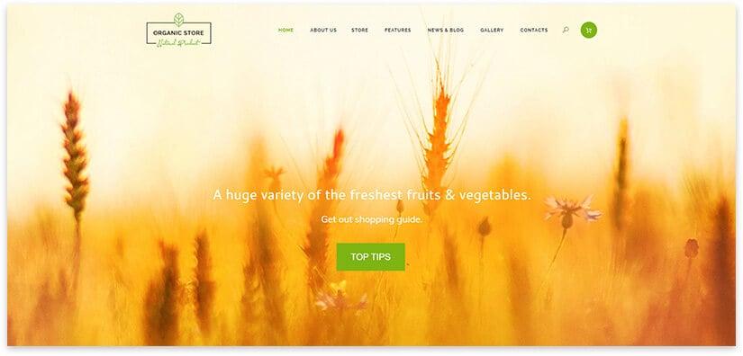 Organic Food WordPress Template