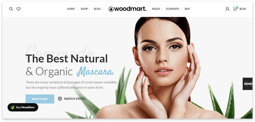 wordpress makeup template