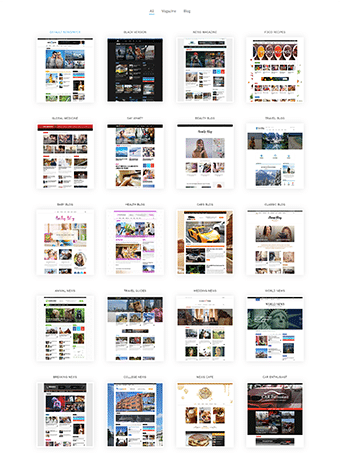 premium wordpress theme review