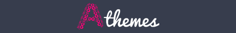 premium wordpress theme review
