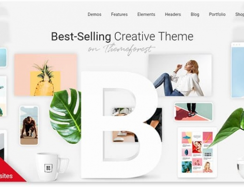 30 high-quality Cool Premium WordPress theme for your website