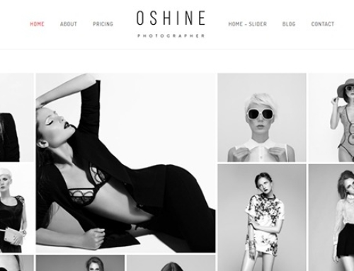 Top 20 Best Premium WordPress Themes for Photographers (June 2017)
