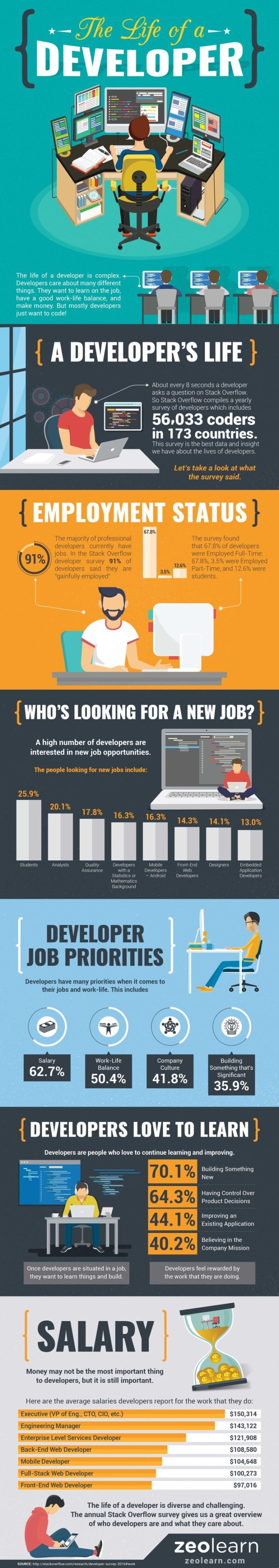 developers work infographic